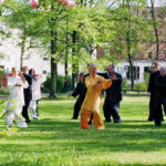tai chi peking form 3