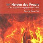Sandy Boucher Im Herzen des Feuers