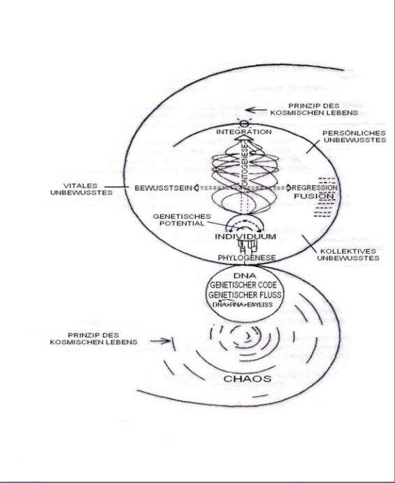 Das Theoretische Modell
